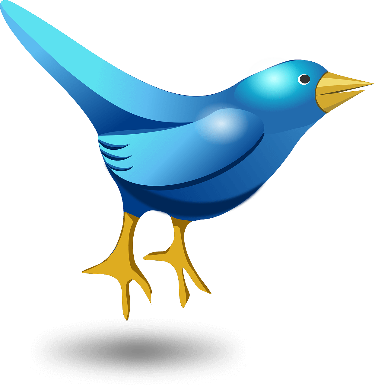 How to get more twitter followers and engagement